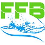 FAUNA FLIES